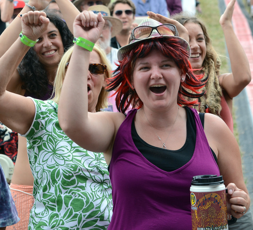 Description of . Audience members cheer as The Wallace Brothers band performs during an afternoon concert at the 53rd Annual Philadelphia Folk Festival on Friday August 15,2014. Photo by Mark C Psoras/The Reporter