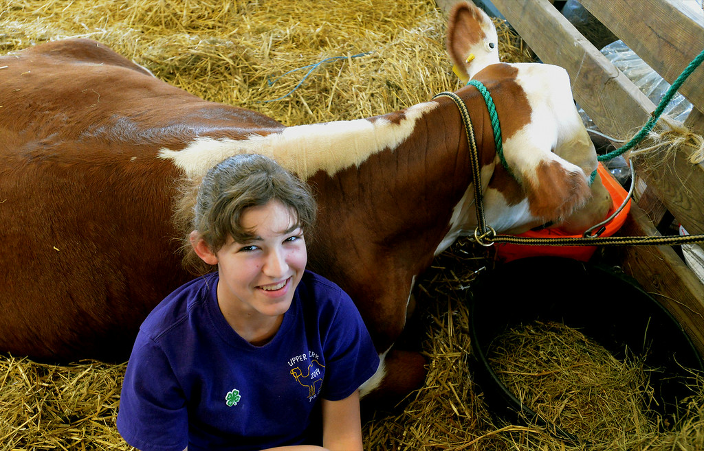 Description of . Lindsay Rodgers hangs out with her blue ribbon steer, Tank, at the Montgomery County 4-H Fair in Creamery Friday, Aug. 8, 2014. Montgomery Media staff photo by Bob Raines