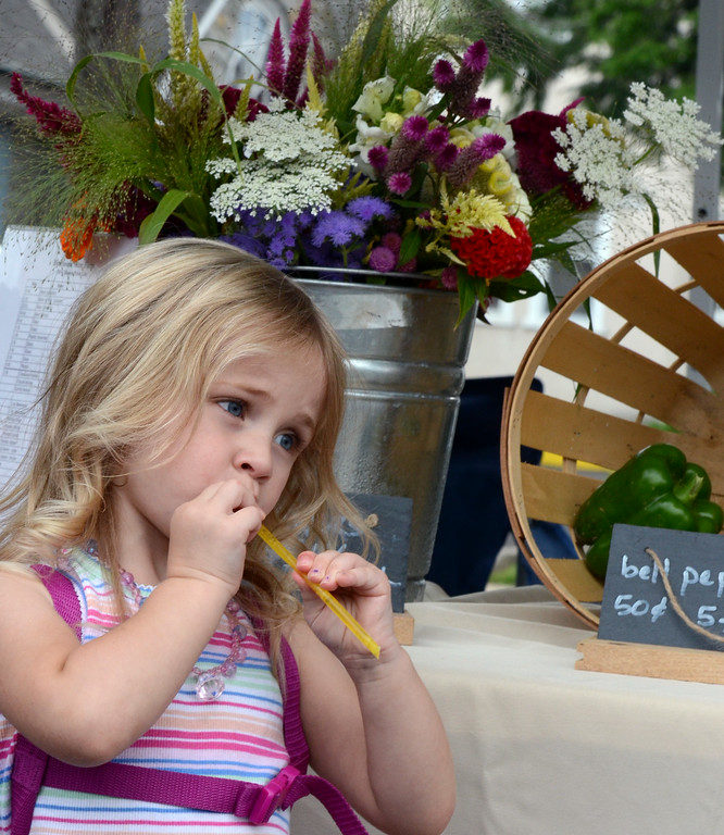 Description of . Shannon Schoonover ,3, enjoys a honey stick at the Telford Farmers Market on Saturday August 2,2014. Photo by Mark C Psoras/The Reporter