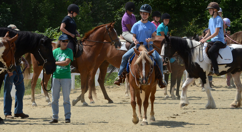 . Riders and handlers take part in a Parade of Horse Breeds during the Montgomery County 4-H Fair in Skippack Township on Saturday August 9,2014. Photo by Mark C Psoras